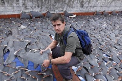 Shawn Heinrichs_shark finning__credit OPS